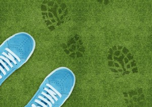 Photo of blue shoes on green lawn